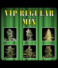 VIP Seeds VIP MIX REGULAR