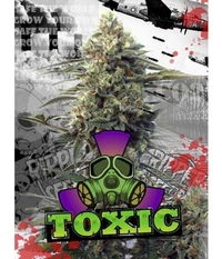 Ripper Seeds Toxic