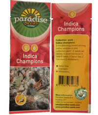 Paradise Seeds Indica Champions