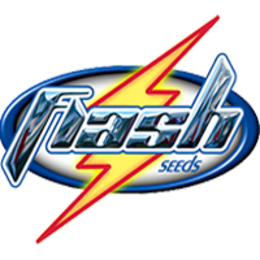 Flash Seeds