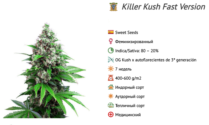 Killer Kush Fast Version